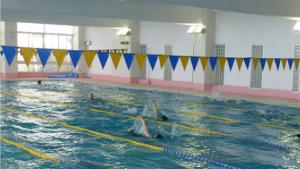 水泳部写真